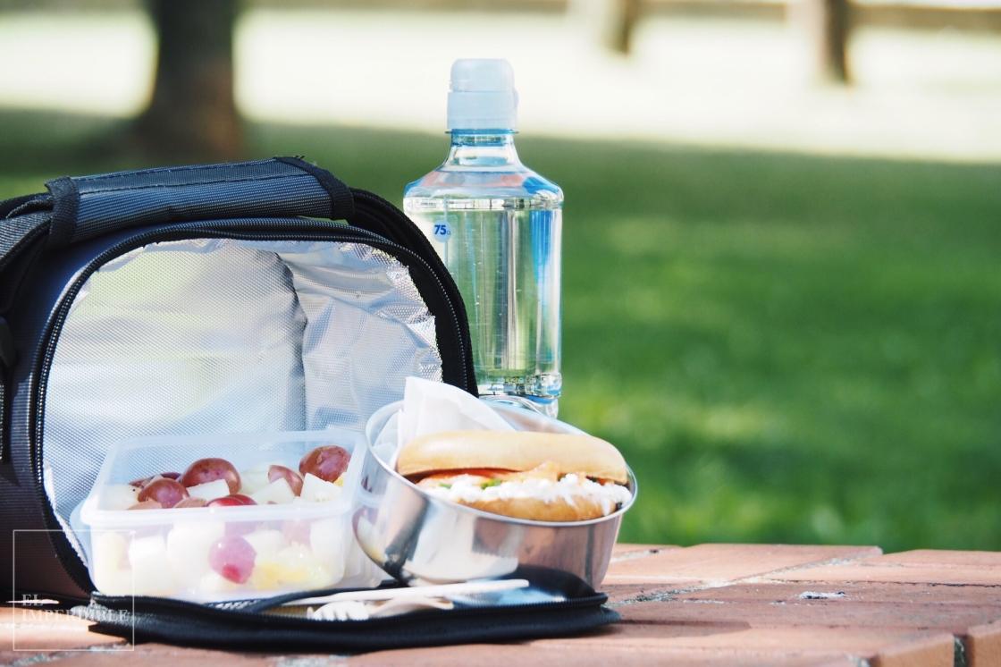 Recetas sencillas y rápidas de comida para llevar
