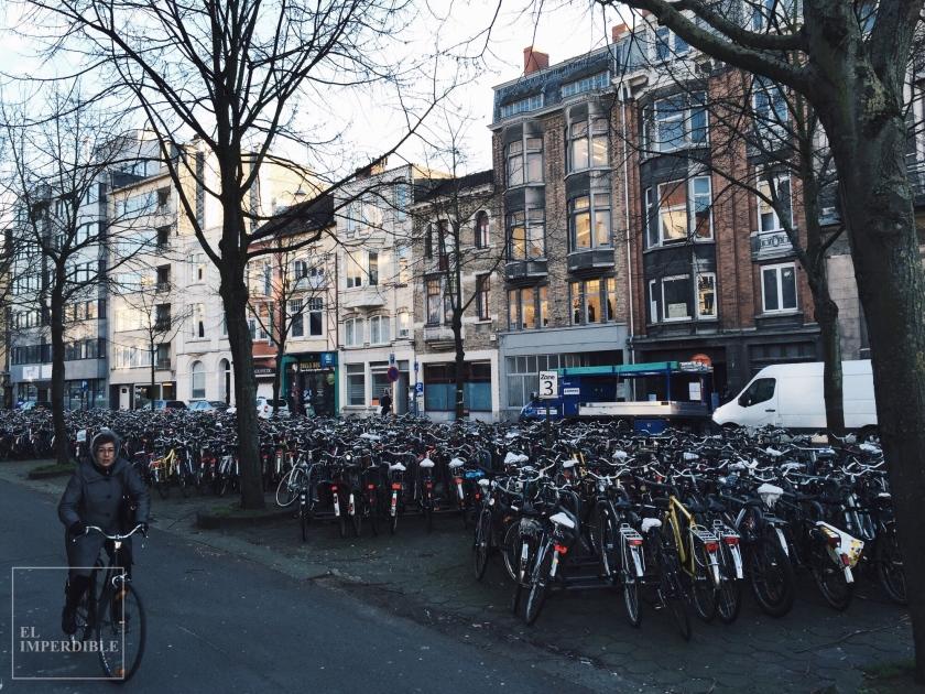 La mejor forma de moverse por la ciudad en bici bicicleta